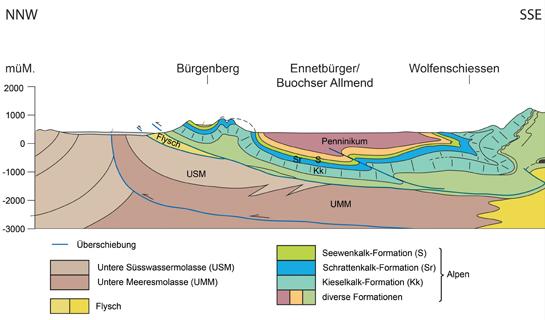 Abb. 6: Schematisches Nord-Südprofil durch den Bürgenberg