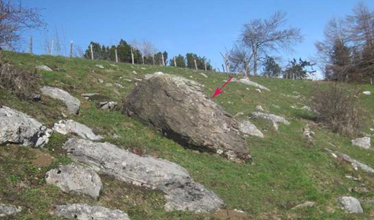 Abb. 6: Dunkler Findling einige Meter südlich des Restaurants Hammetschwand. Auffällig ist sein Kontrast zum umliegenden (anstehenden) Kalkstein.