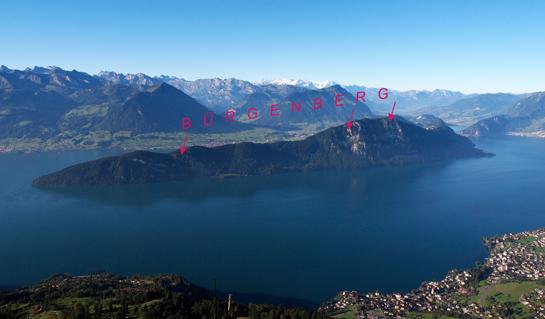 Abb. 4: Bürgenberg-Nordflanke: Mit geschultem Blick sind die Bergsturz-Abrissgebiete gut erkennbar.