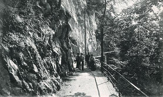 Abb. 1: Felsenweg am Bürgenberg